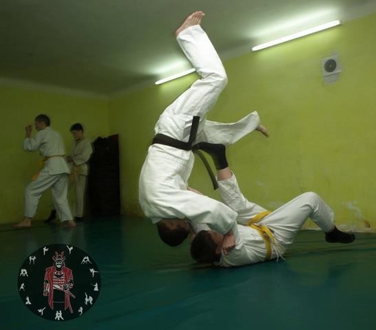 Бойове Айкідо |Спорт