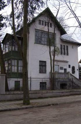 Художньо-меморіальний музей Івана Труша|Дозвілля