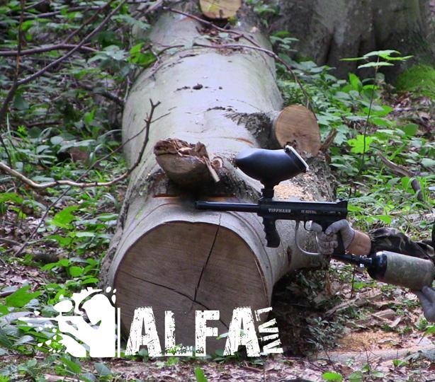 Alfa|Дозвілля